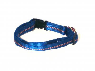 Hundehalsband Nylon royal