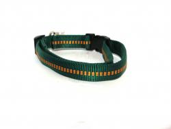 Hundehalsband Nylon grün
