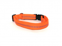 Hundehalsband Nylon orange